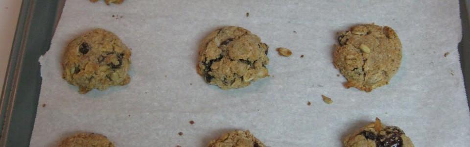 Writing a business plan + Vegan gluten free oatmeal trailmix cookies!